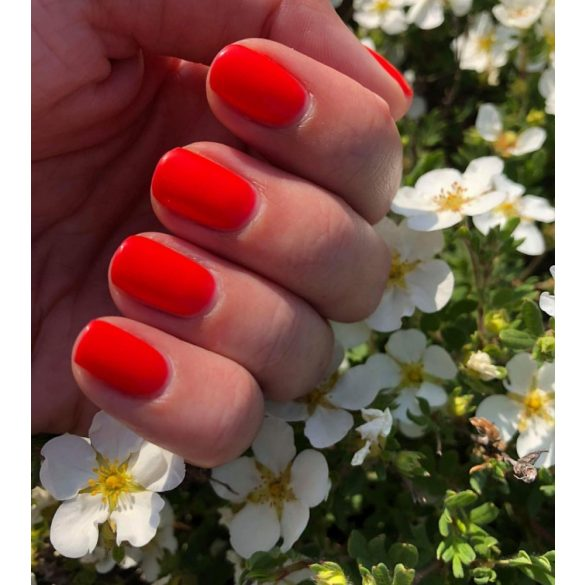 Gel Polish - DN196
